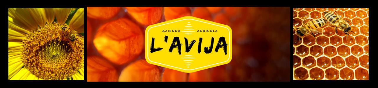 a-l-avija-banner.jpg